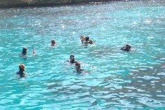 les-chemins-du-vent-et-les-plongeurs-frioul-2011-11