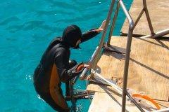 les-chemins-du-vent-et-les-plongeurs-frioul-2011-12