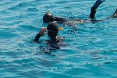 les-chemins-du-vent-et-les-plongeurs-frioul-2011-16
